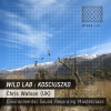 THE WILD LAB – KOSCIUSZKO