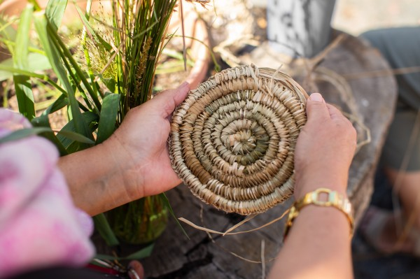 Photo of grasses for weaving in the background with hands holding woven object in the foreground